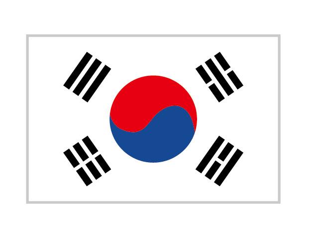 美容整形_韓国